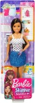 BARBIE SKIPPER BRUNETKA FHY89/FXG92