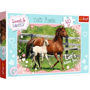 PUZZLE 160 SWEET & LOVELY 15331
